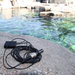 Build-a-Hydrophone